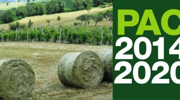 La nuova politica agricola comunitaria 2014-2020. Scenario e Prospettive