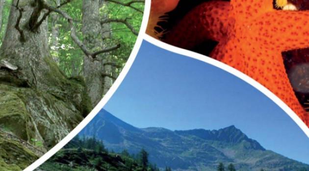 A passi di biodiversità