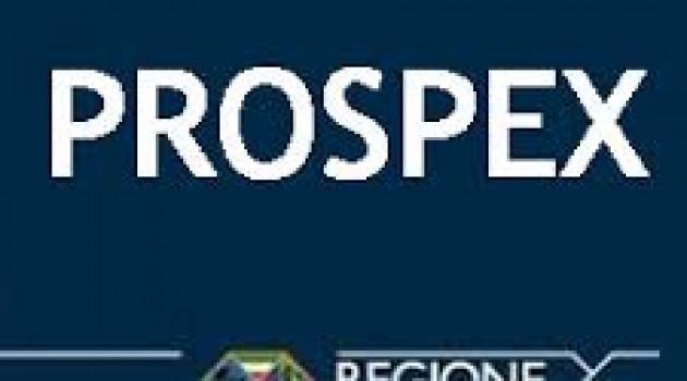 POR FESR, contributi alle PMI per Progetti Strutturati di Promozione dell'Export (PROSPEX)