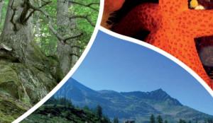 biodiversita_vittoriano