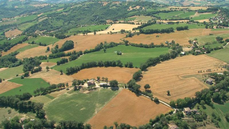 10-paesaggio-agricolo-marchigiano
